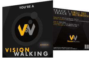 You're a Vision Walking [CD Single]
